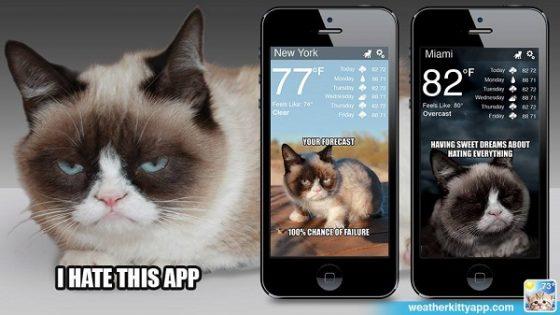 Grumpy Cat tendrá su propia app