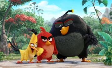 Se revela el elenco de voces para la película de Angry Birds